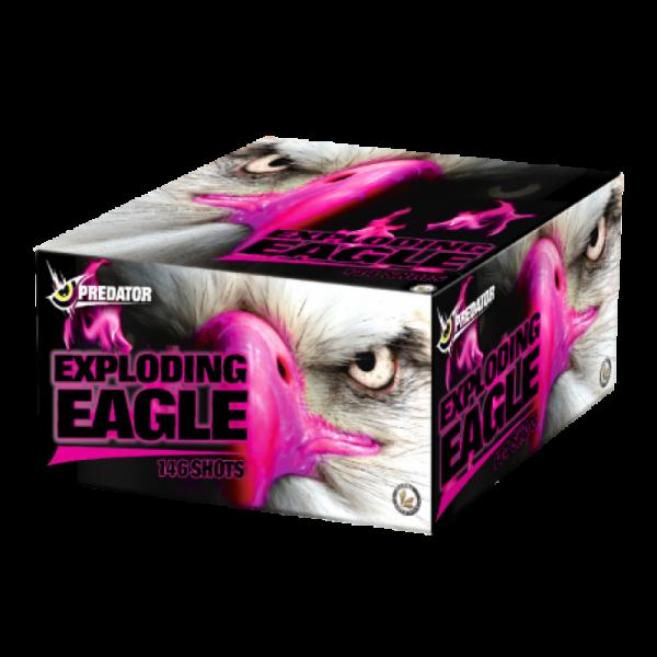 Lesli Exploding Eagle