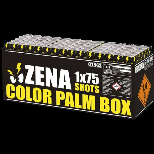 Color Palm Box